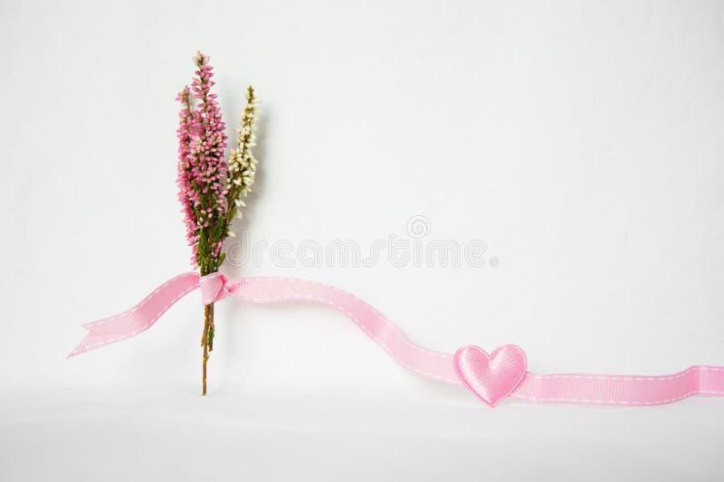 Roze purpere heidebloem met roze hart royalty-vrije stock afbeeldingen