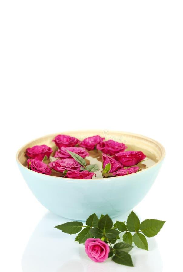 Roze rozen in kom royalty-vrije stock afbeelding