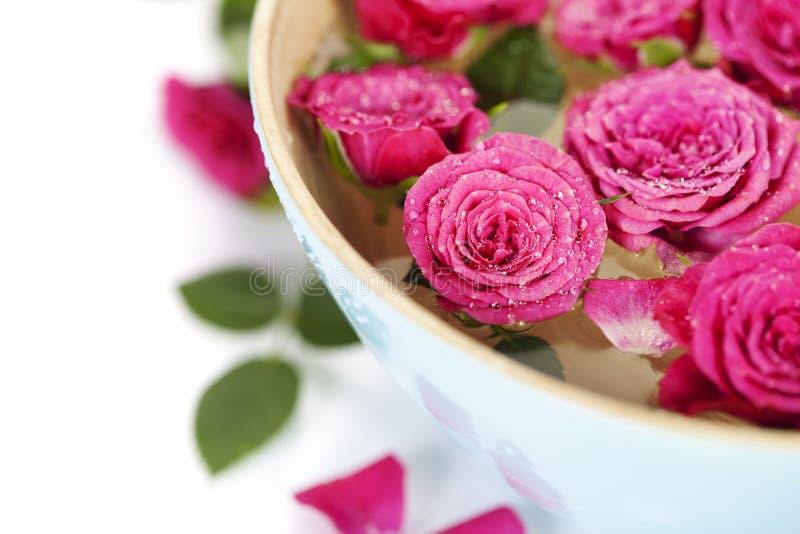 Roze rozen in kom royalty-vrije stock fotografie