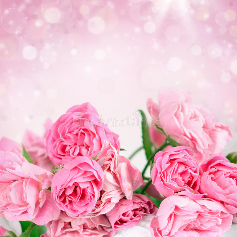Roze rozen op bokehachtergrond royalty-vrije stock foto's