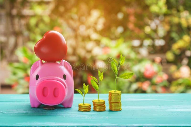 roze spaarvarken meer dan muntstukkenstapel, die geld besparen royalty-vrije stock foto's