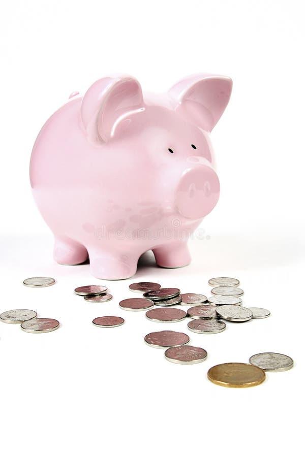 Roze Spaarvarken met muntstukken stock fotografie