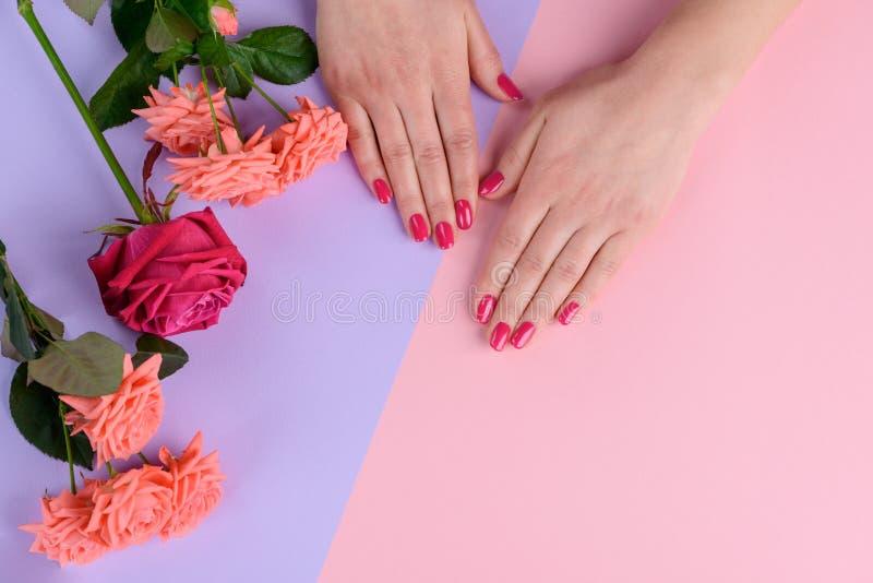 Roze spijkers en rozen stock foto