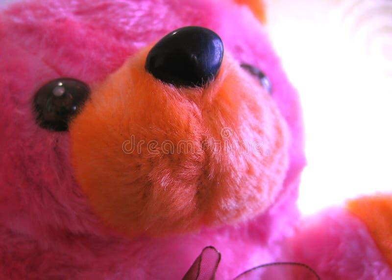 Roze teddybeer royalty-vrije stock foto's