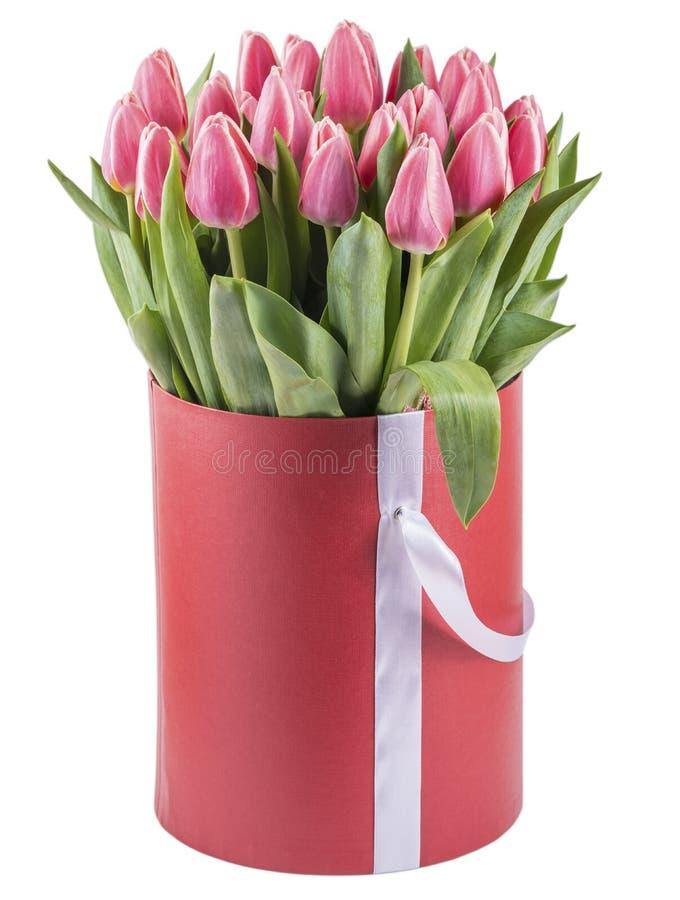 Roze tulpen in een ronde die hoedendoos, op witte achtergrond wordt geïsoleerd royalty-vrije stock afbeelding