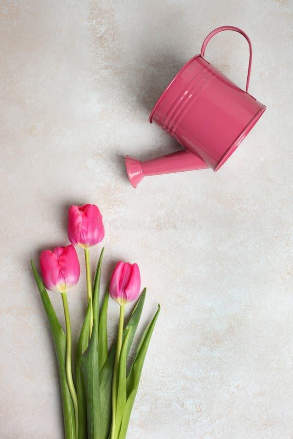 Roze tulpen en gieter royalty-vrije stock foto's