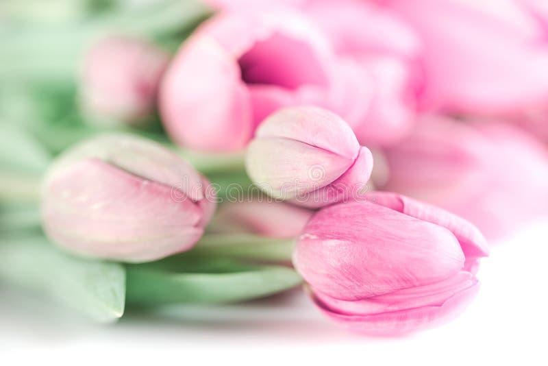 Roze tulpenboeket stock foto's