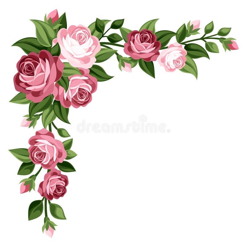 Roze uitstekende rozen, rosebuds en bladeren. stock illustratie
