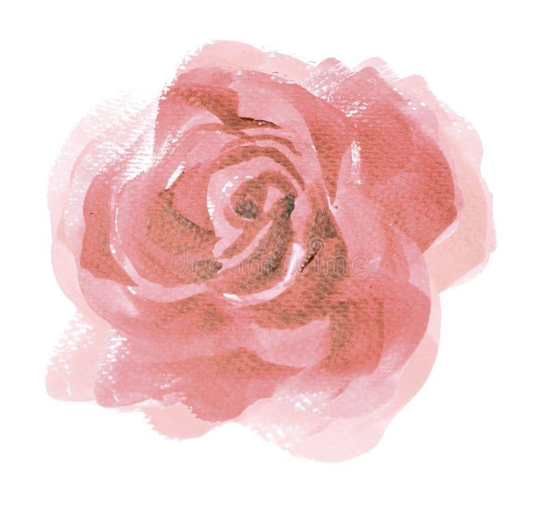 Roze van de het Huwelijksuitnodiging van de rozen watercolour Uitstekende stijl roze ros stock illustratie