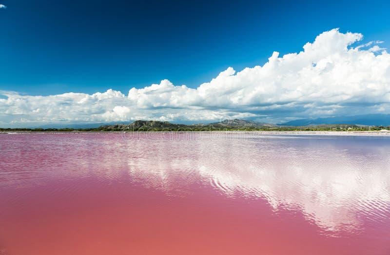 Roze water zout meer in Dominicaanse Republiek stock foto
