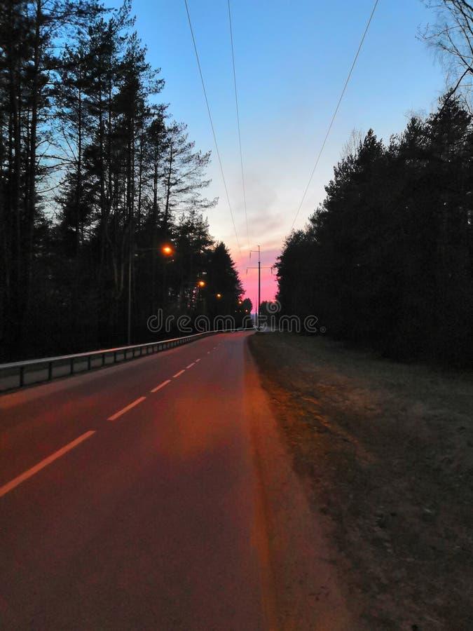 Roze weg royalty-vrije stock foto's
