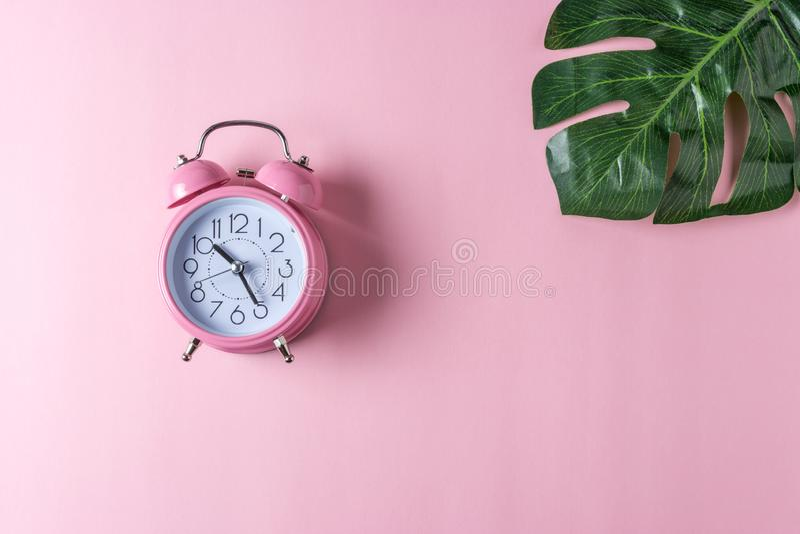 Roze wekker met palmblad op pastelkleur roze achtergrond Minimaal concept royalty-vrije stock fotografie