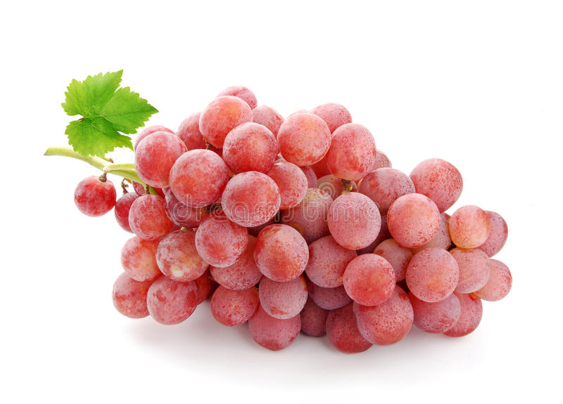 Roze wijndruif stock afbeelding