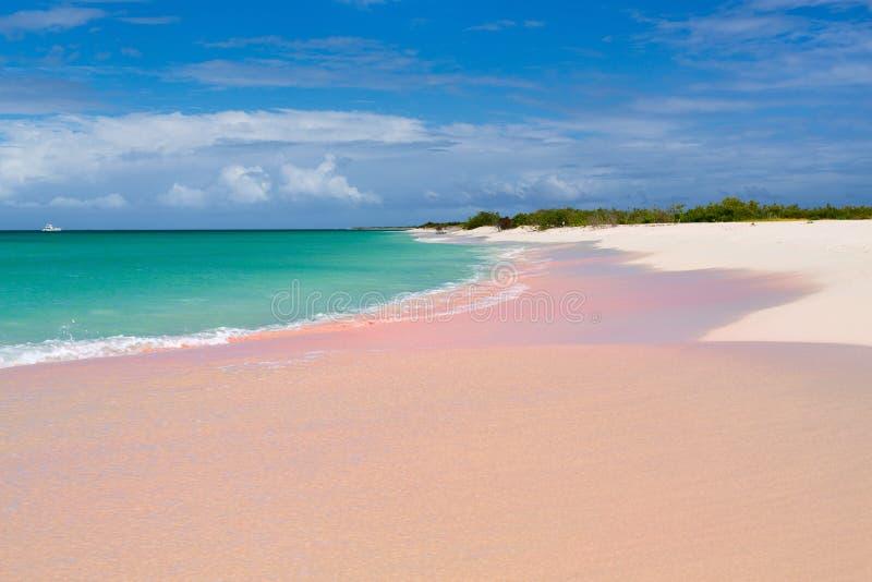 Roze zandstrand stock afbeeldingen