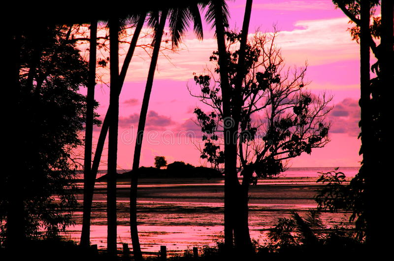 Roze Zonsondergang stock foto