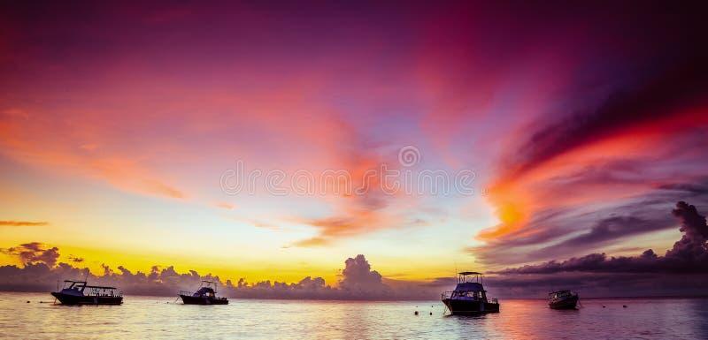 Roze zonsondergang in de keerkringen stock foto