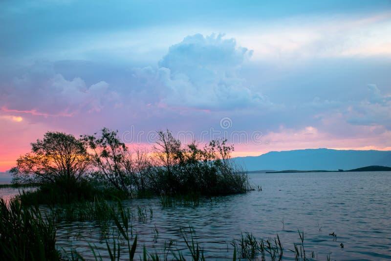 Roze zonsopgang irtysh rivier royalty-vrije stock afbeelding