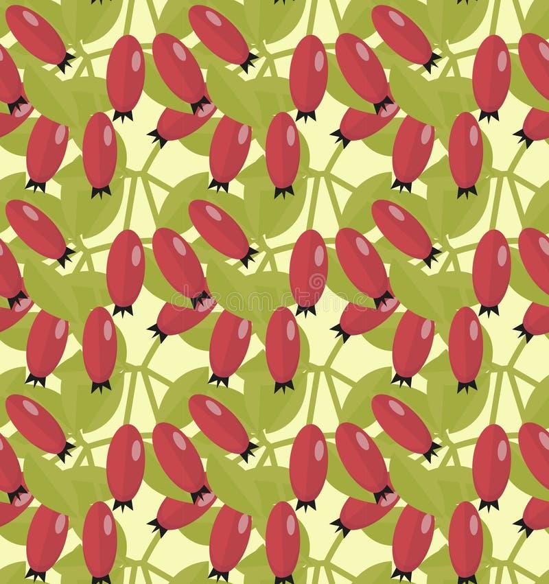 Rozebottel naadloos patroon Haagdoorn eindeloze achtergrond Rode de herfstbessen die textuur herhalen Vector illustratie royalty-vrije illustratie