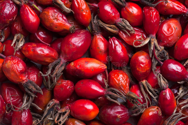 Rozebottelfruit stock fotografie
