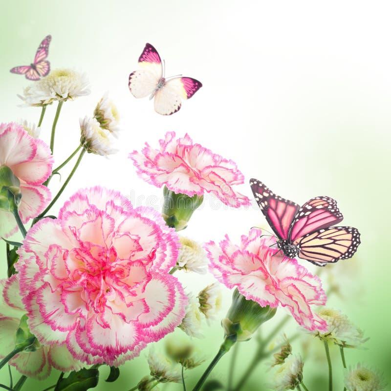 Rozen en vlinder, bloemen royalty-vrije stock afbeelding