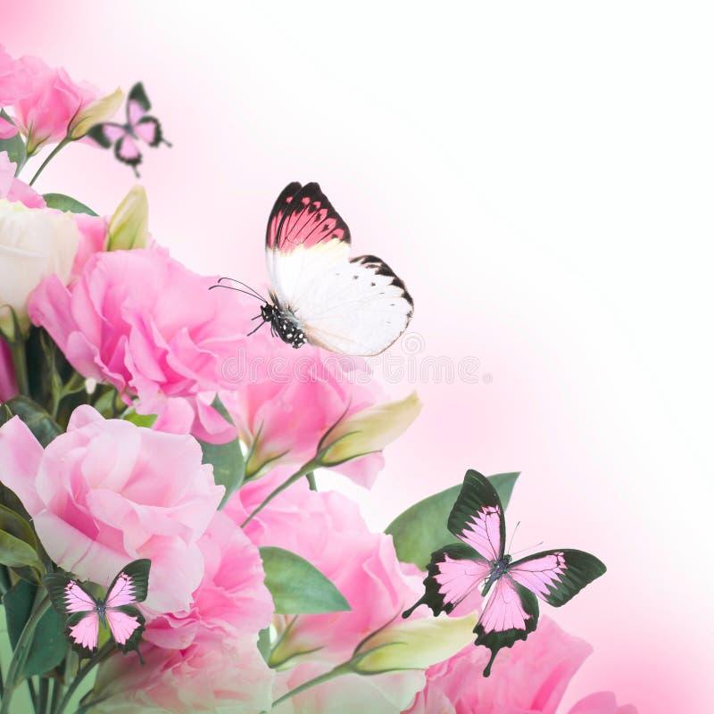 Rozen en vlinder, bloemenachtergrond vector illustratie