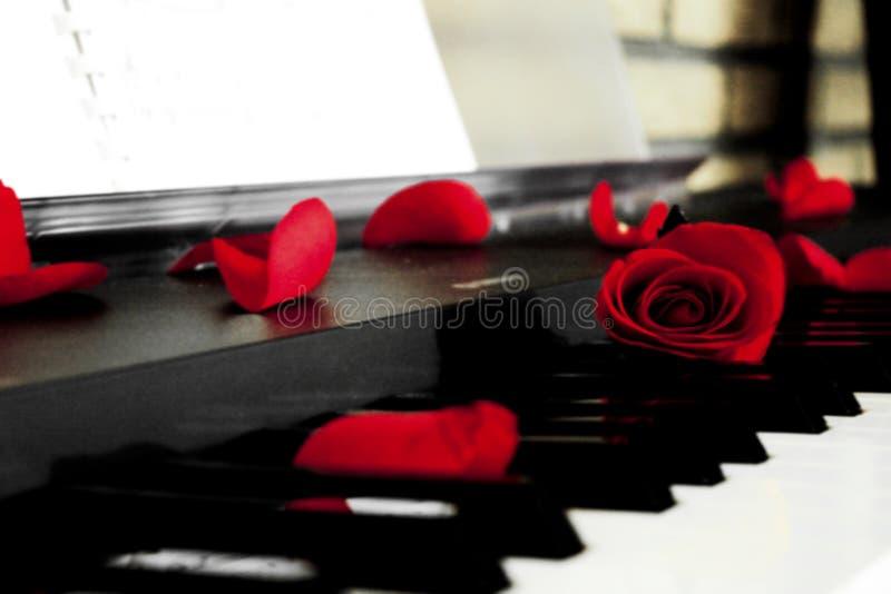 Rozen op de piano stock afbeeldingen