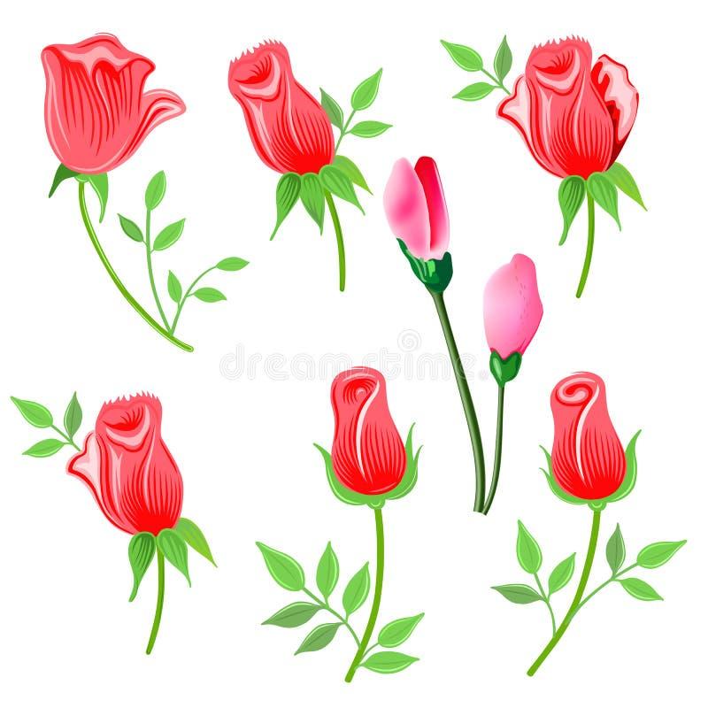 Rozen & takje met geplaatste bladeren royalty-vrije illustratie
