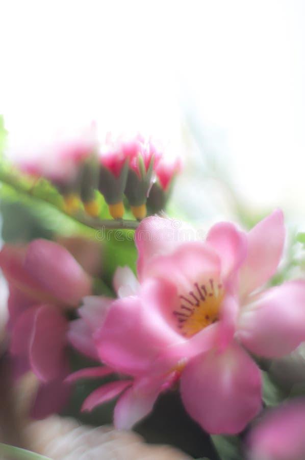 rozen van plastiek royalty-vrije stock afbeelding