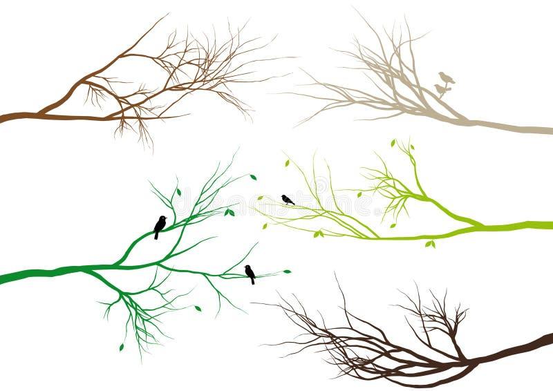 rozgałęzia się drzewa ilustracji