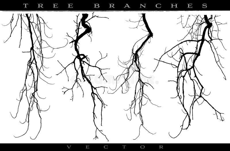 rozgałęzia się drzewa royalty ilustracja