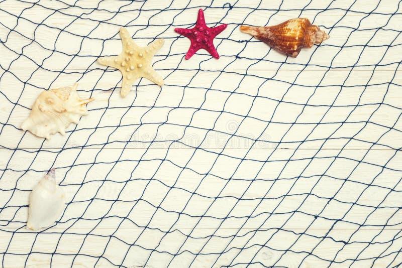 Rozgwiazda i seashell na lekkim drewnianym tle zdjęcia stock
