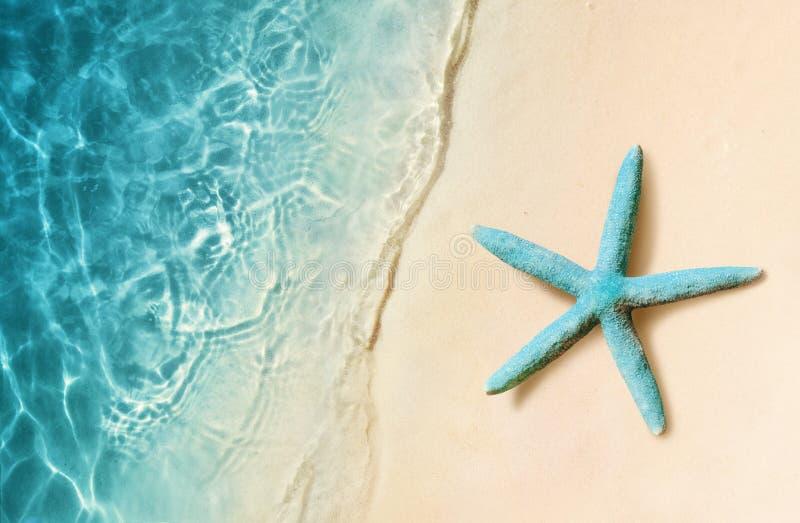 Rozgwiazda na piasek plaży i ocean jako tło plażowej brzegowej cibory śródziemnomorska piaska kamieni lato kipiel zdjęcia stock