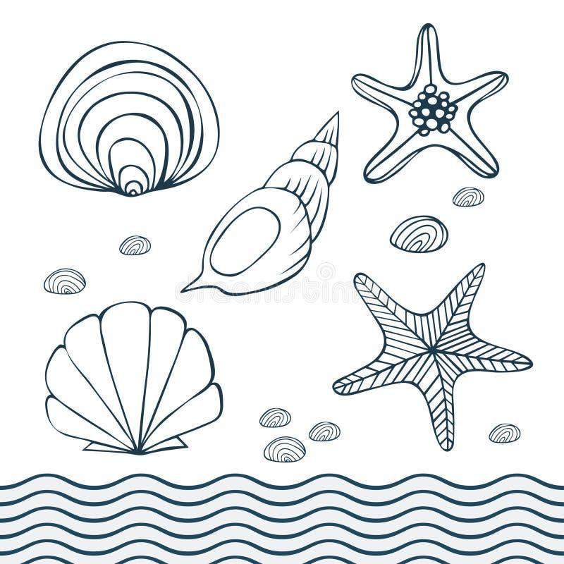 Rozgwiazda, seashells i kamienie odizolowywający przedmioty, ilustracja wektor
