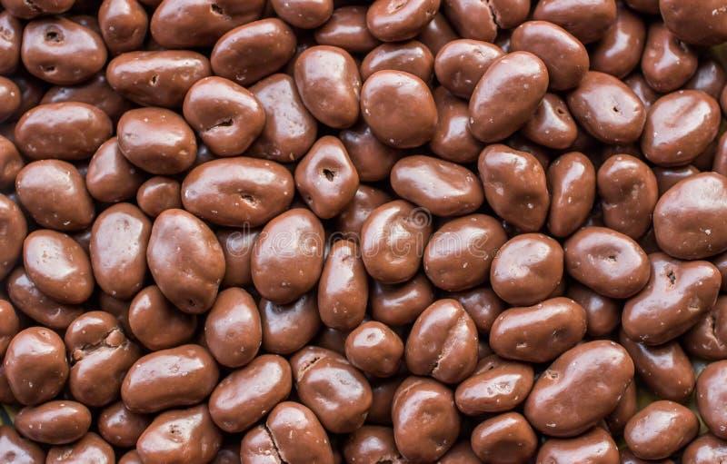 Rozijnen in chocolade worden behandeld die. royalty-vrije stock foto's
