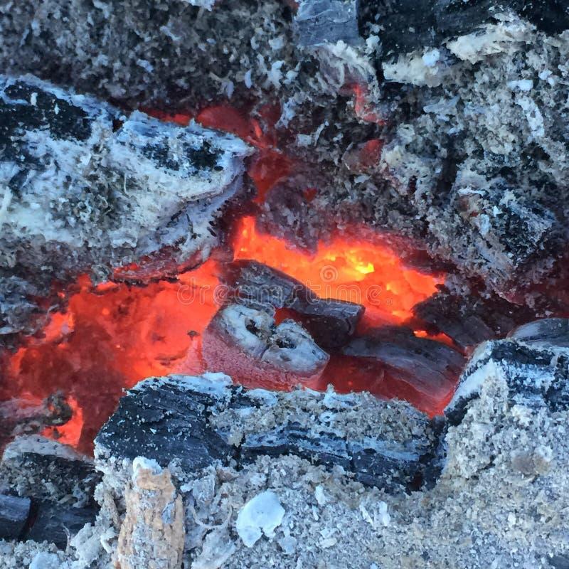 Rozjarzeni embers popiół i drewno zdjęcie stock