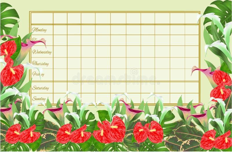 Rozkładu zajęć tygodniowy rozkład z kwitnącymi lelujami Cala i wektorowym Ilustracyjnym editable anthurium, palmy, filodendronu i ilustracji
