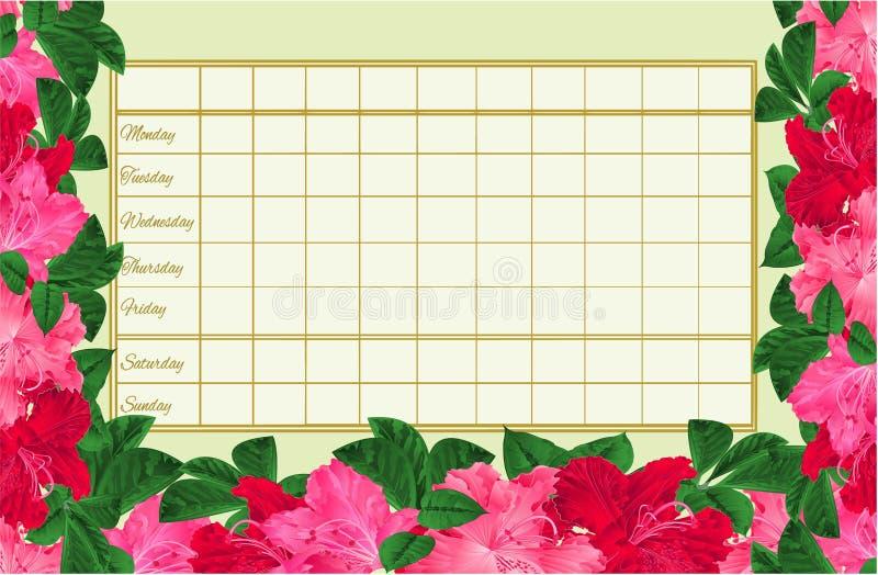 Rozkładu zajęć tygodniowy rozkład z kwitnienie czerwienią i menchiami kwitnie różanecznika rocznika wektorowy ilustracyjny editab ilustracji