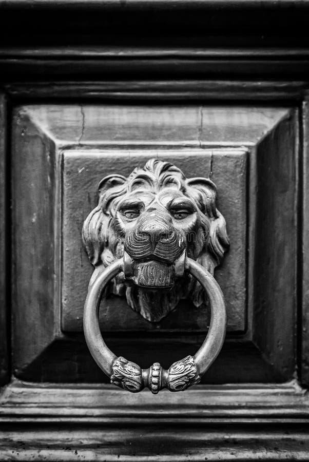 Rozmówca kształtny złoty lew fotografia royalty free