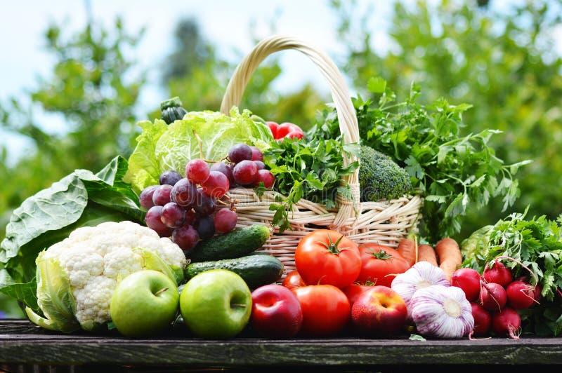 Rozmaitość świezi organicznie warzywa w ogródzie obraz stock