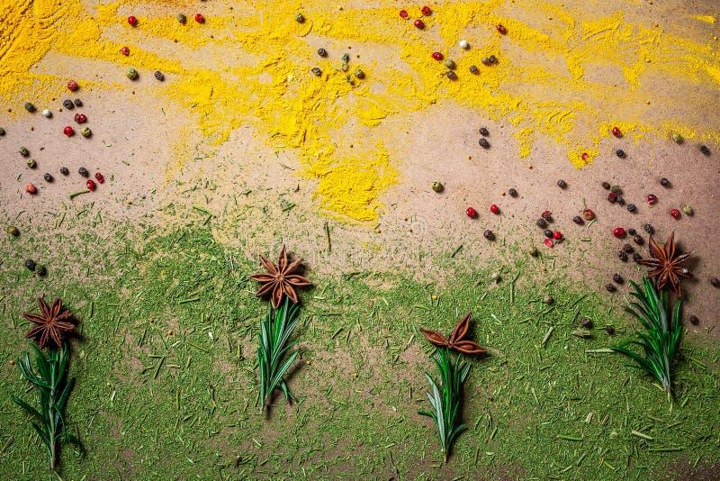 Rozmaitość pikantność i ziele na kuchennym stole Mieszkanie nieatutowy kosmos kopii fotografia royalty free