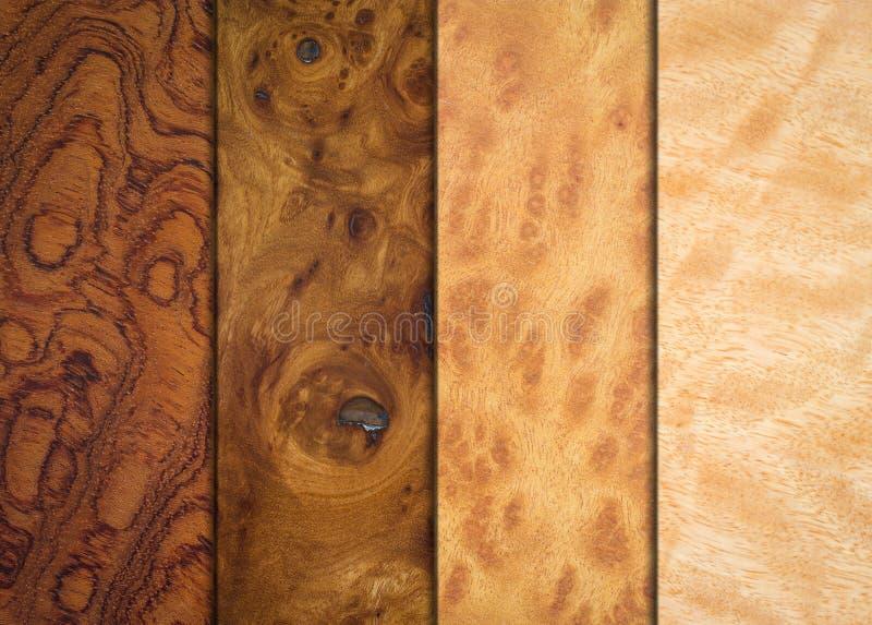 Rozmaitości drewna tekstury obraz royalty free