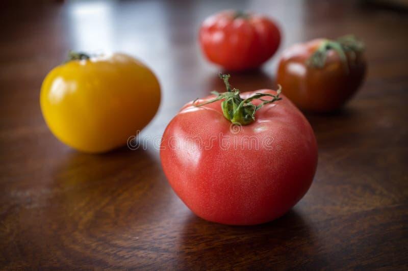 Rozmaitości Heirloom pomidory obrazy stock