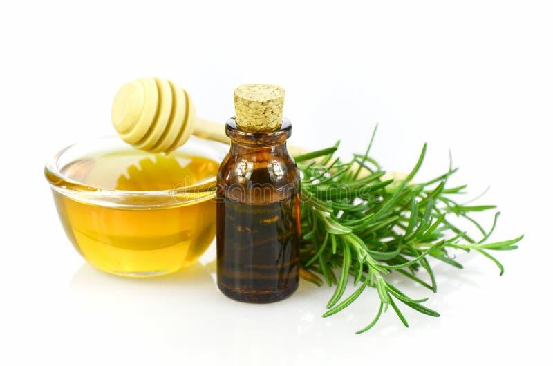 Rozmarynów, miodowego i istotnego olej dla homeopatii remedium, zdjęcia royalty free
