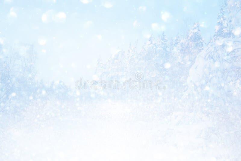 Rozmyty i abstrakcjonistyczny magiczny zima krajobraz obraz royalty free