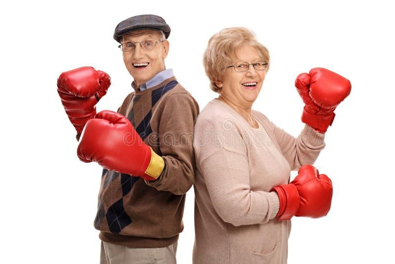 Rozochoceni seniory z bokserskimi rękawiczkami zdjęcie stock