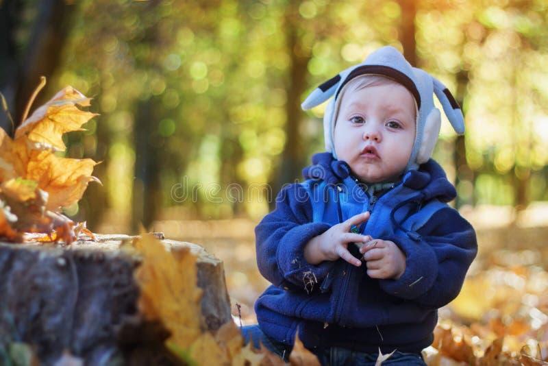 Download Rozochocona Uśmiechnięta Chłopiec W Jesień Parku Zdjęcie Stock - Obraz złożonej z pozytyw, human: 42525806