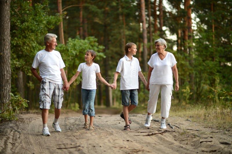 Rozochocone chłopiec z jego dziadkami ma zabawę zdjęcia stock