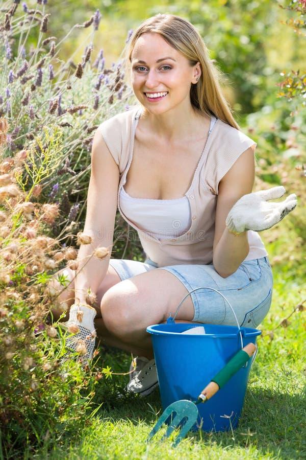 Rozochocony żeński flancowanie kwitnie w jardzie zdjęcia stock