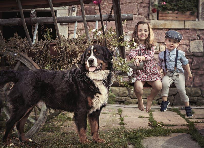 Rozochocony brat i siostrzany relaksować na gospodarstwie rolnym zdjęcie stock
