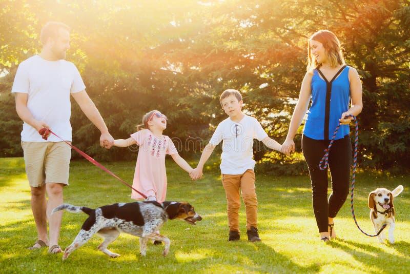 Rozochocony rodzinny odprowadzenie wraz z psami w parku zdjęcia royalty free